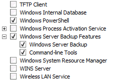 Selecting features to install to use Windows Server Backup.