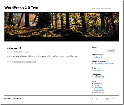 New default theme (Twenty Ten) for WordPress 3.0